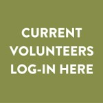 Volunteer Log In