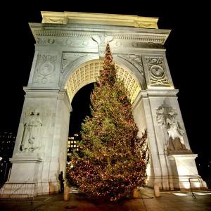 Washington-Sq-Park-Xmas-Tree