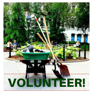 Volunteer! (2)