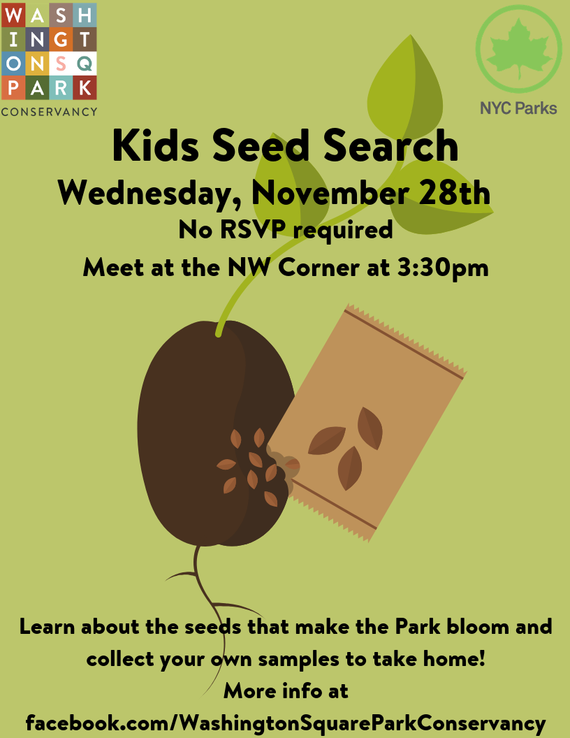 Kids Seed Search | Washington Square Park