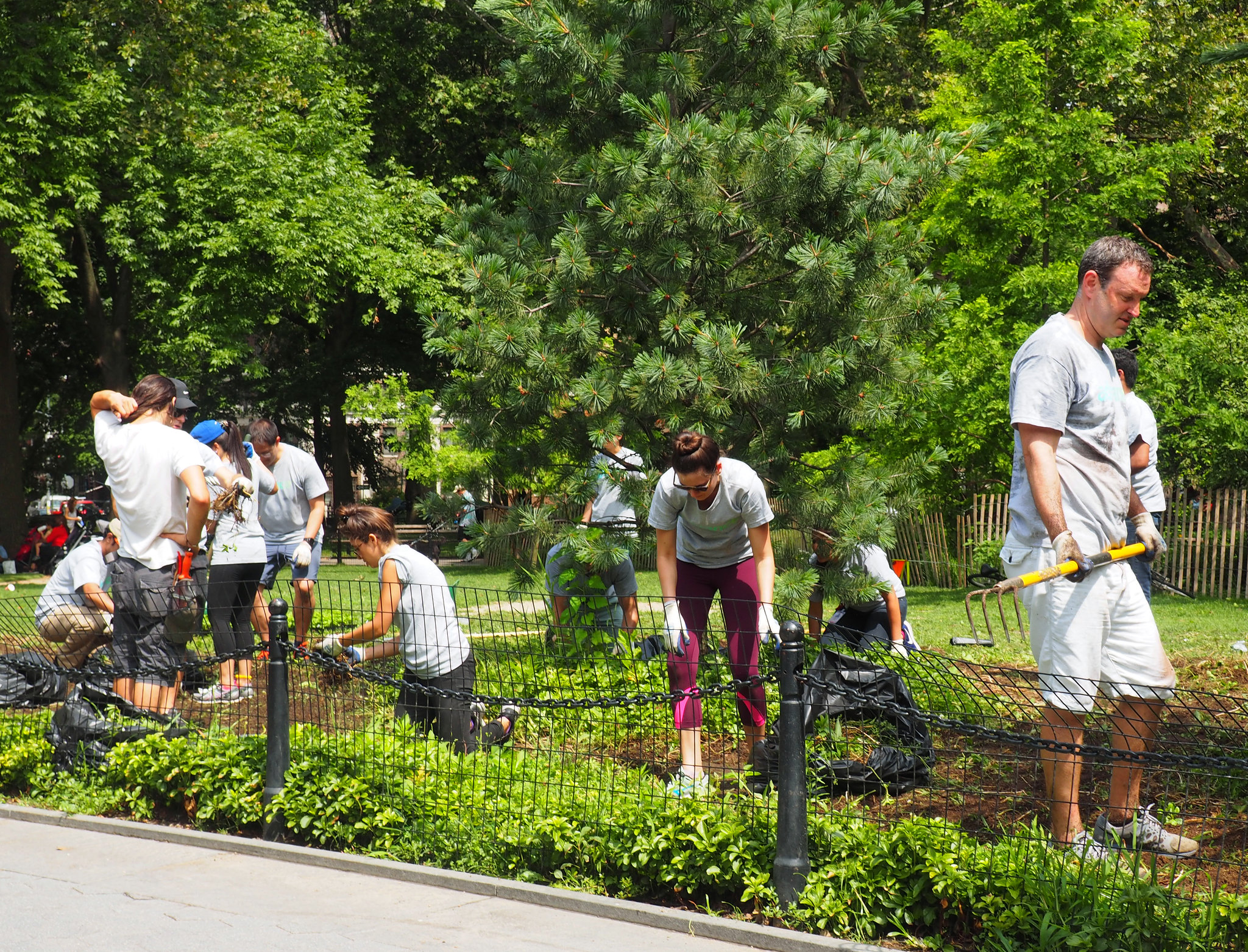 POSTPONED Volunteer at Washington Square Park — First monthly clean